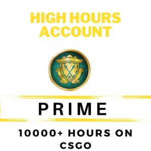 CSGO PRIME | 10000+ HOURS  | FACEIT READY